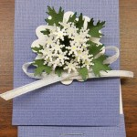 BE 1035 matchbook - Queen Anne's Lace 1
